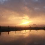 Zonsondergang bij Ternaard